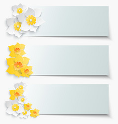 A set of banners with 3d yellow daffodils Spring vector image