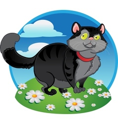 Black fat cat on the color background vector image vector image
