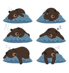 Lazy bear sleep sleeping cute teddy character vector