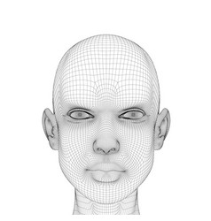 Wireframe head girls with a serious facial vector