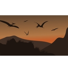 Silhouette of pterodactyl flying at afternoon vector