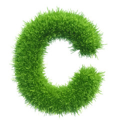 small grass letter c on white background vector image vector image