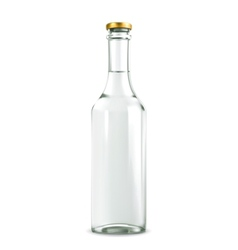 Alcohol drink in bottle vector image vector image