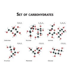 Carbohydrate sugar set vector image