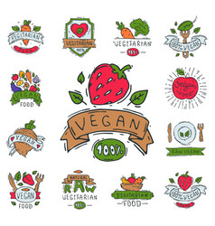 hand drawn style of bio organic eco healthy food vector image