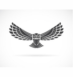 Owl design on a white background wild animals vector