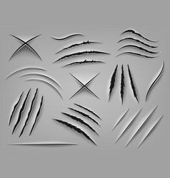 Realistic claw scratch paper cut and scratch vector