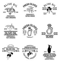 set of vintage olive oil labels design element vector image