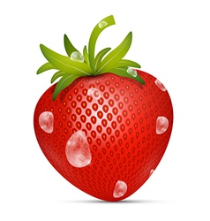 Strawberry with Water Drops on White Backgro vector