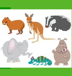 Wild animal characters cartoon set vector