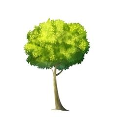 Big Green Tree vector image vector image