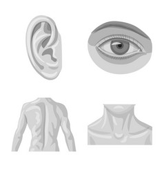 Isolated object of human and part icon set vector