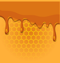 Melting honey on honeycomb texture vector