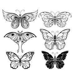 Set of art butterflies vector