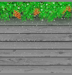 spruce snow gray wooden background vector image