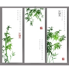 Three banners with green bamboo trees vector
