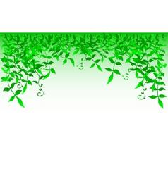 bushy vector image vector image