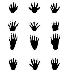 Black footprints raccoon vector