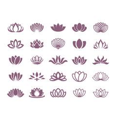 concept of a lotus logo icon vector image
