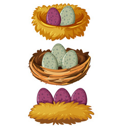 Different types of nests and eggs vector