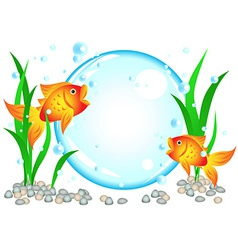 Goldfish advertisement vector