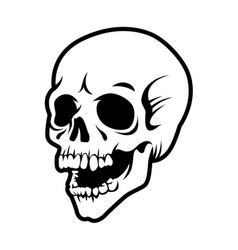 laughing human skull vector image
