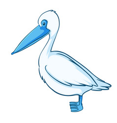 blue pelican on white background vector image