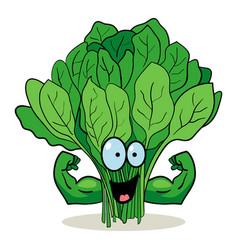Cartoon spinach vector