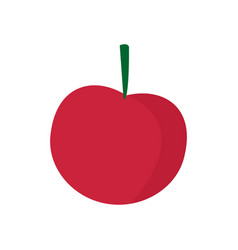 Cherry with a fruit stem ripe fresh vector