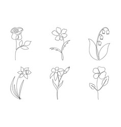 continuous line flower set one line drawing vector image