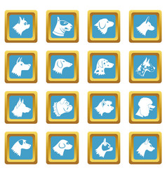 Dog icons azure vector