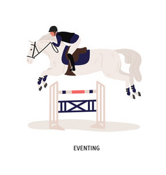 eventing equestrian competition flat vector image