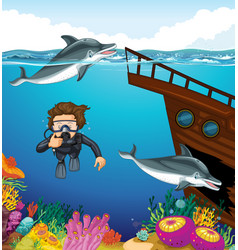 Man scuba diving with two dolphins vector
