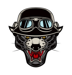pantera head in biker helmet design element vector image
