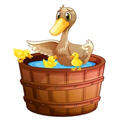 A duck and her ducklings at the bathtub vector image vector image