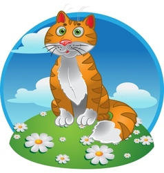 Orange funny sitting cat on color background vector image vector image