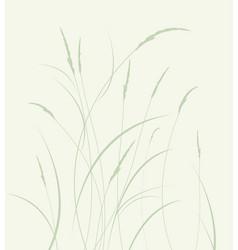 Grass in a meadow vector