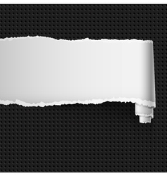 Curl of white paper vector image