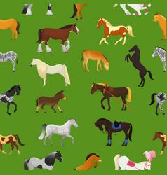cartoon horse cute animal of horse-breeding vector image