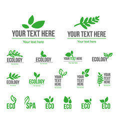concept of green leaves vector image