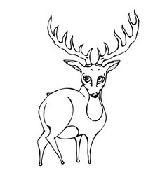 Cute deer reindeer caribou cartoon caracter vector