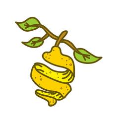 lemon fruit design template flat vector image
