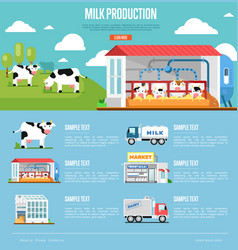 Milk production infographics in flat style vector