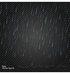 Rain Really transparent effect vector image
