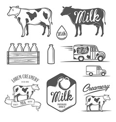 Set of milk and creamery design elements vector image vector image