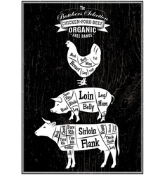 diagram cut carcasses of chicken pig cow vector image vector image