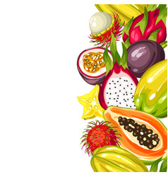 seamless border with exotic tropical fruits vector image