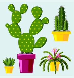 cactus flat style nature desert flower green vector image