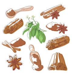 Cinnamon sticks set vector