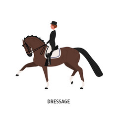 Dressage horseback riding flat vector